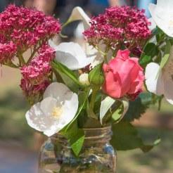 countryhorizons_bvmarketsflowers