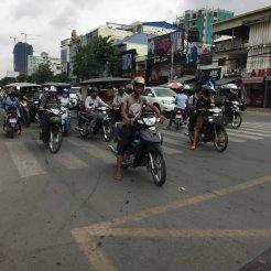 countryhorizons_cambodia_herd