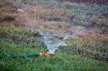 countryhorizons_sprinkler
