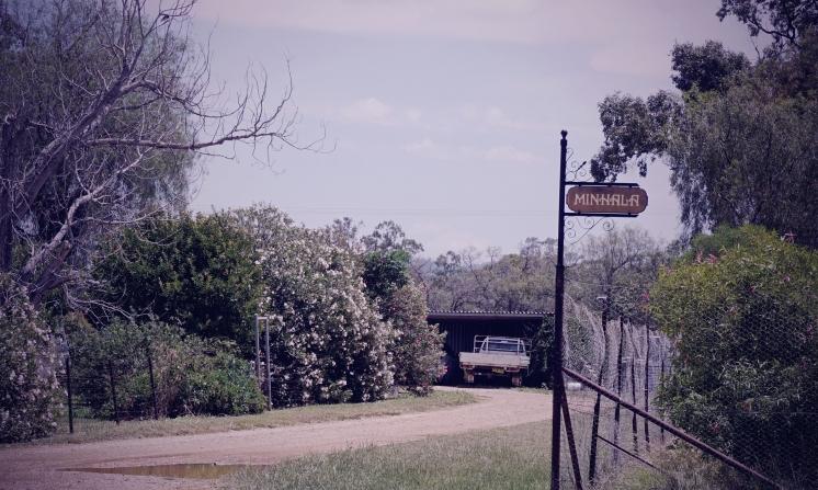 Minhala_driveway2